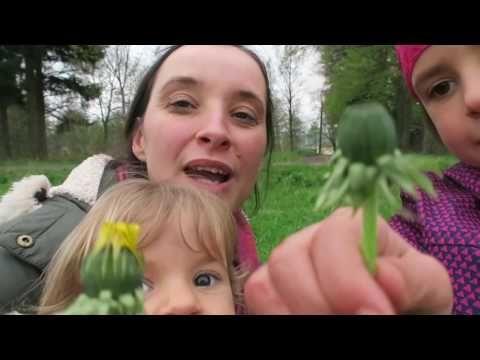 Divoké kapary I Síla pro život - YouTube
