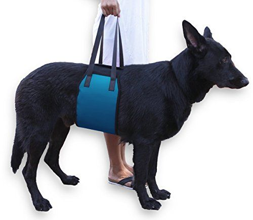 Novadeal Dog Support Rehabilitation Harness Sling Dog Lift Harness Blue  Cozy Soft Double Extra Strong Fabric Tape with Handle for Weak and Injuries Hind Leg or Joint Support ** You can find out more details at the link of the image.