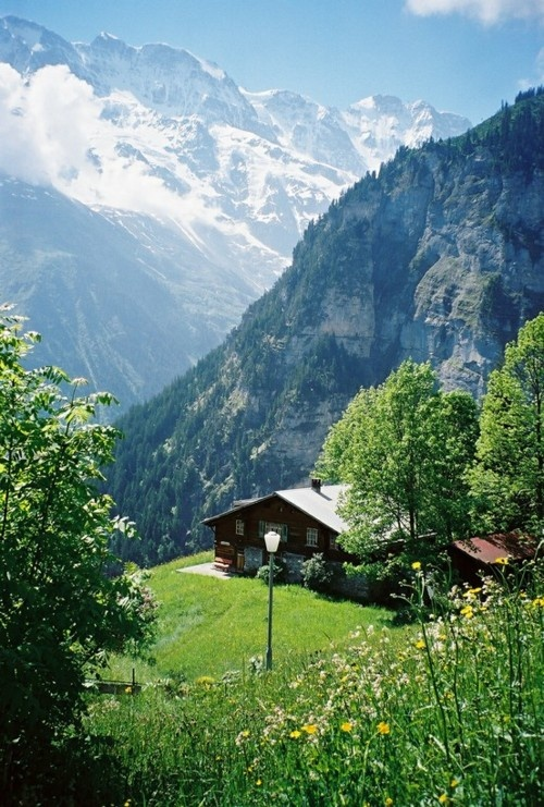 Switzerland Travel Inspiration - Gimmelwald (Kanton Bern) Switzerland - Can  you imagine living in this house on the side of the mountains?
