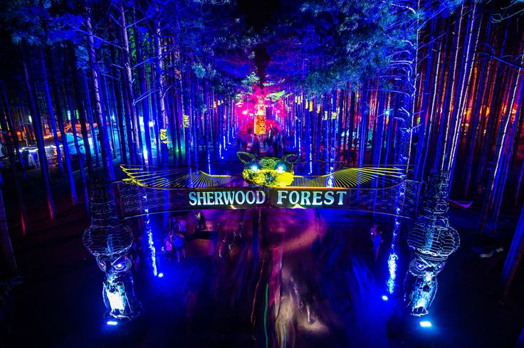 Photo by Brian Spady © Electric Forest Festival 2013