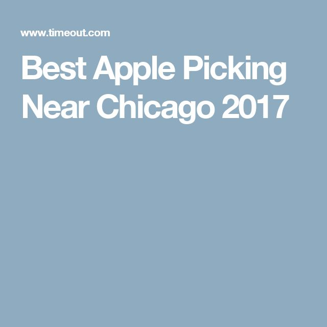 Best Apple Picking Near Chicago 2017