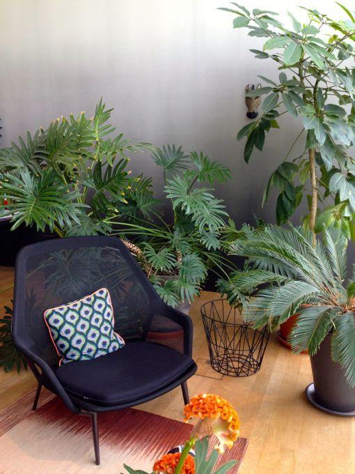 Green cafés, shops, restaurants - via Miris Jahrbuch