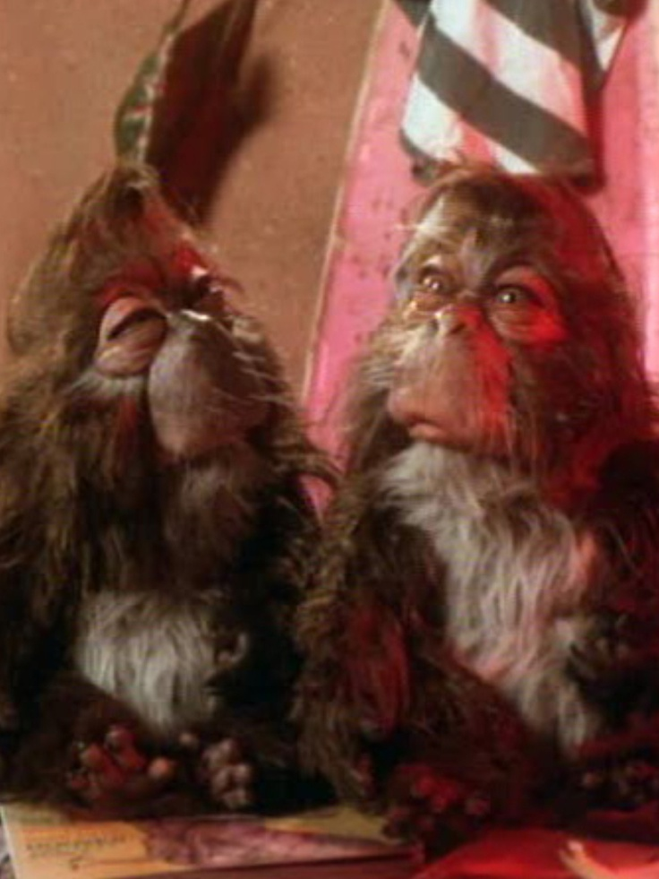 Old Caveman Show : Grapdelites from dinosaurs tv show my favorite shows