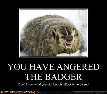You Have Angered The Badger Cheezburger Network Badger