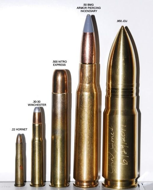 "Ammo and Gun Collector: .950 JDJ Worlds Largest ""Sporting ..."