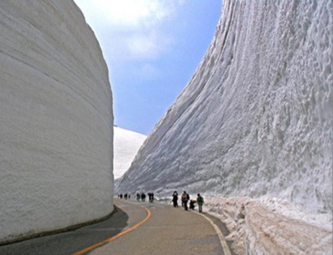 30' snow is regular on Honshu island, Japan.