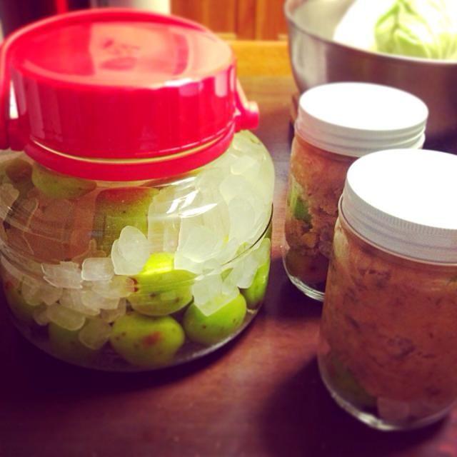 梅酢味噌は、青梅→氷砂糖→味噌を交互にいれるだけ。  梅酒は味醂メインで仕込むと美味いんだけど、、、今回はスピリットで仕込みました。 - 18件のもぐもぐ - 梅酒と、梅酢味噌。 by Araki1118