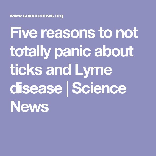 Five reasons to not totally panic about ticks and Lyme disease | Science News