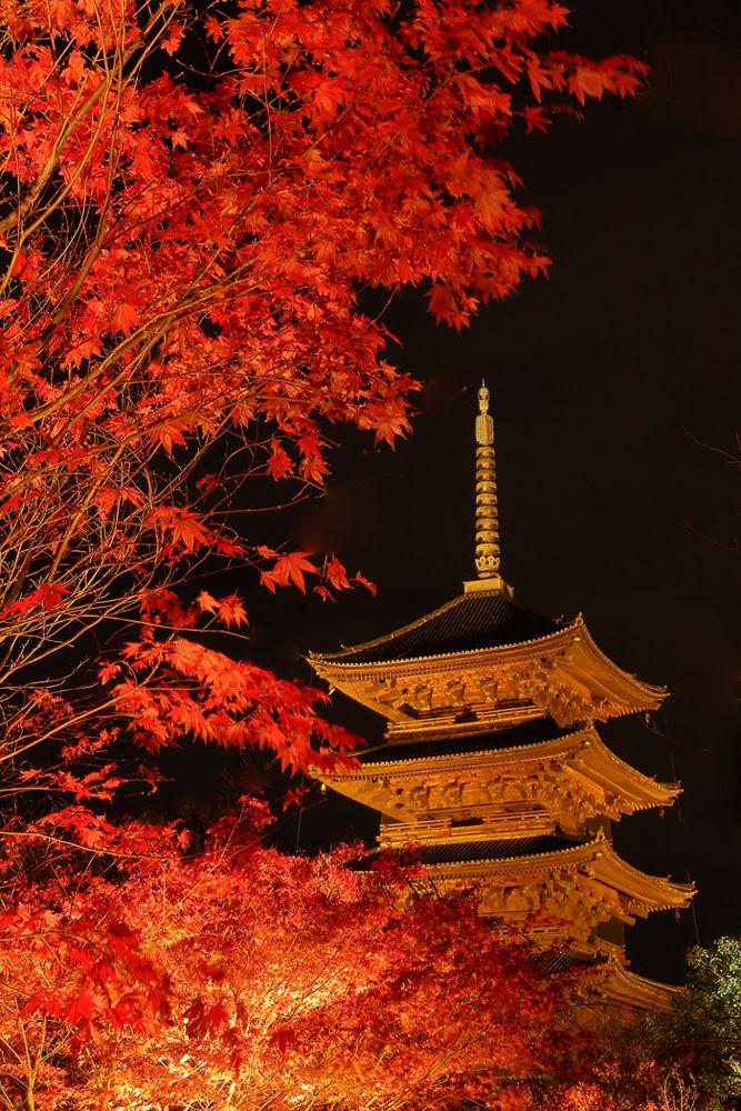 東寺 To-ji Temple,Kyoto もっと見る