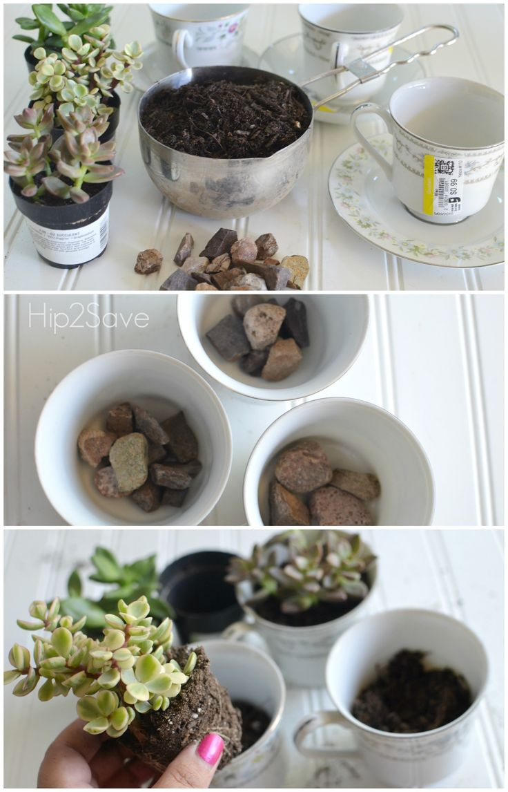 59 best gift ideas images on pinterest cards amor and for Indoor plant gift ideas