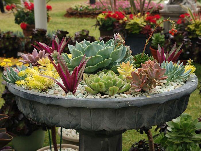▷ 1001 + modèles de parterre de fleurs avec galets | Plante ...