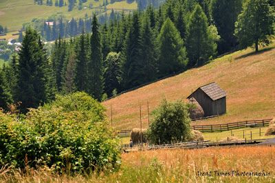 Ciumarna Pass (between Sucevita and Moldovita) is a mountain pass at an elevation of 1,109m above the sea level, located in the Obcina Mare range, in the Carpathians mountains, Romania. http://greattimesphotography.blogspot.ro/2015/09/ciumarna-pass.html