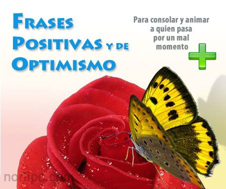 Frases positivas, de consuelo y optimismo