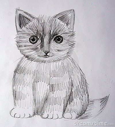 Striped black and white fluffy kitten. Frontal view. Monochrome drawing. Big eyes