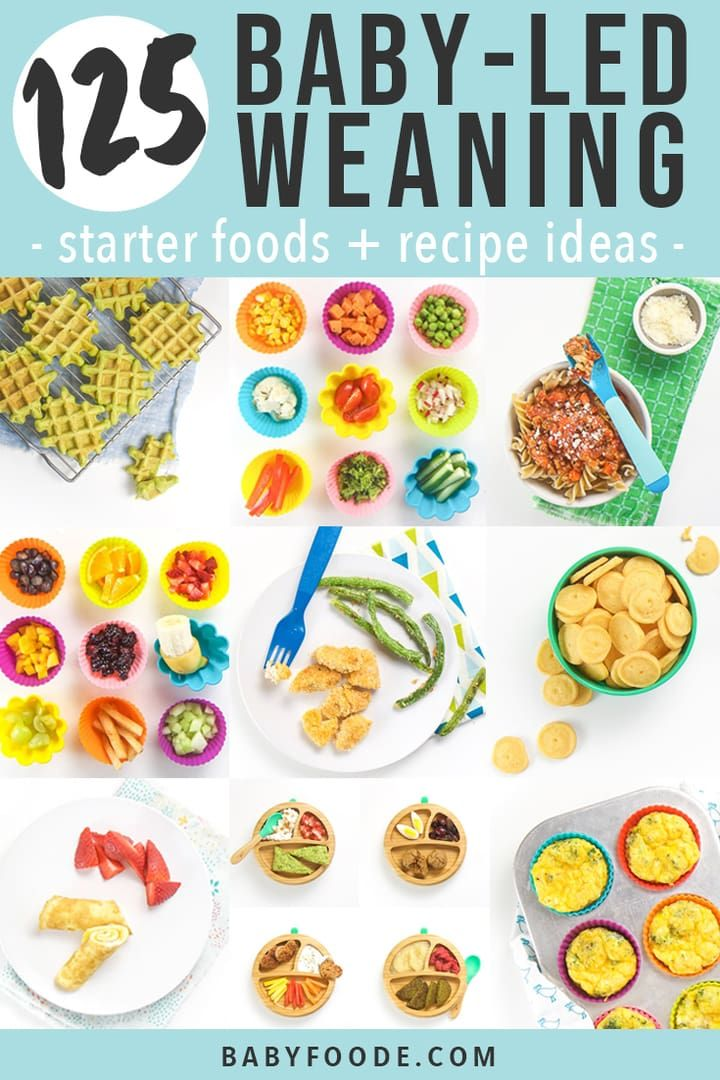 125 Baby Led Weaning Foods (Starter + Recipe Ideas