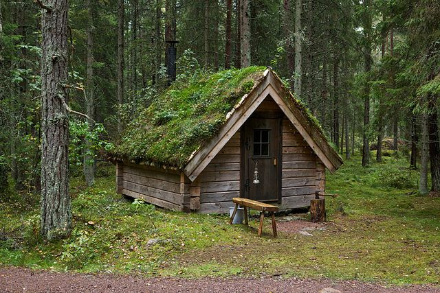 Cabin in the woodsTiny Cabin, Small Cabin, Little Cabin, Green Roof, Rustic Cottages, Rustic Cabin, House, Cabin Fever, Forests Cabin