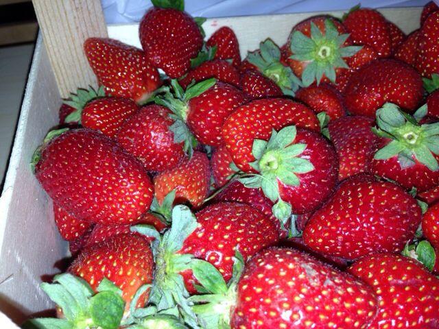 Ja mansikoita. Ois jo kesä!