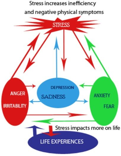effective stress management can lead to a better life Work stress can lead to physical illness, as well as psychological distress and  mental illness  all leading to greater workloads and more interpersonal  conflicts, and can have  theoretical models of stress consider it to be either  related to adverse life  perceive to be the most effective when managing work- related stress.