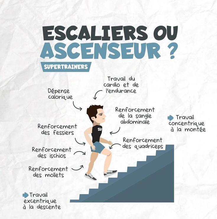 Escalier ou ascenseur   Musculation, Exercice musculation