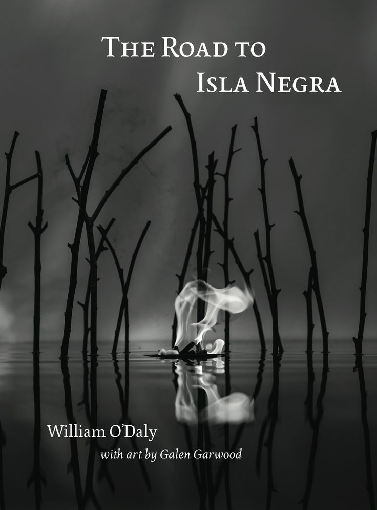The road to isla negra review