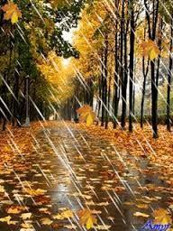 Картинки по запросу дождливая погода