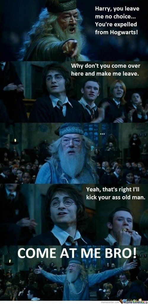 Funny Meme Harry Potter : Best images about harry potter memes on pinterest