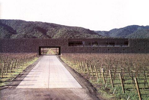 Dominus winery, Napa Valley, CA by Herzog + De Meuron