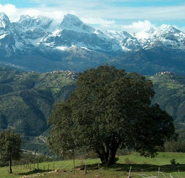kabylie algérie -