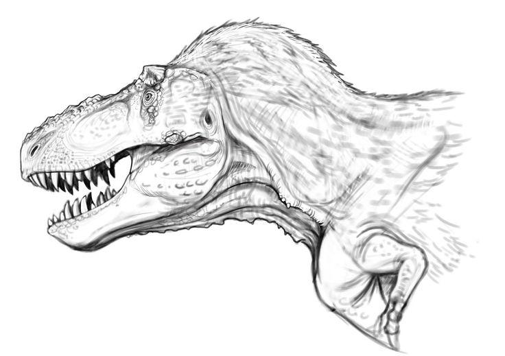 Tyrannosaurus rex head study by Raul A. Ramos