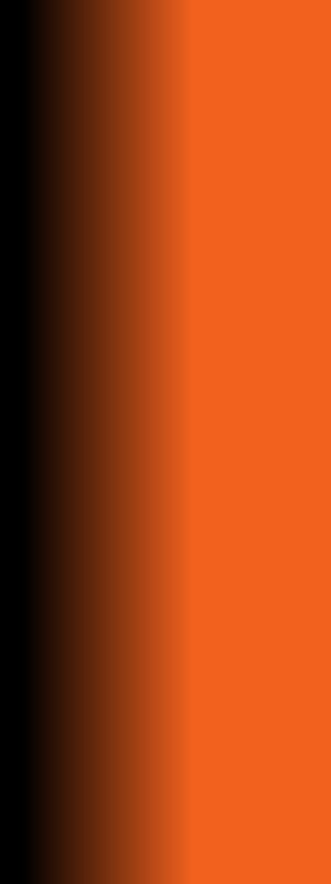 Pata Negra Schinken  http://blickwinkel-portal.de/pata-negra-schinken-spaniens-und-oder-der-weltweit-37536.html