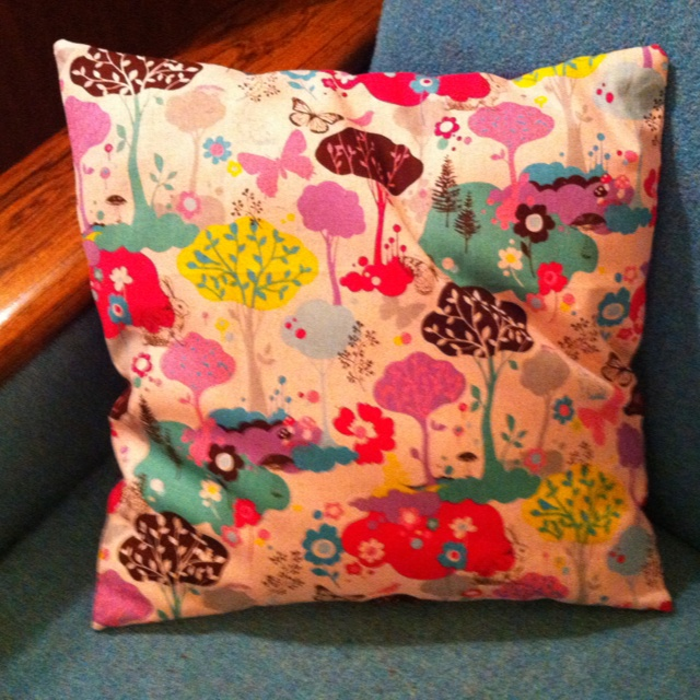 This is a pillow for our sofa.