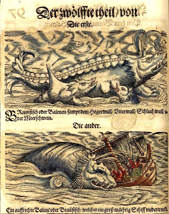 "Images of kraken, monstrous whales, and ""leviathans"" proliferated in early modern bestiaries. This engraving is from Konrad Gesner's Fischbuch, Der zwölffte theil von de Meertheire (1598), fol. 97r."