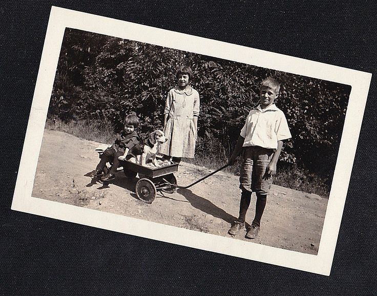 Старинная фотография маленькая девочка с мальчиком потянув малыша и щенок собака в вагон | eBay
