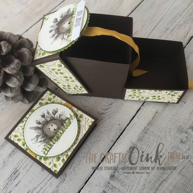 Stamping Harvest Painted Harvest Suite Hedgehog Box by Mikaela Titheridge, Independent Stampin' Up! Demonstrator, The Crafty oINK Pen. Autumn cuteness. Supplies available through my online store 24/7