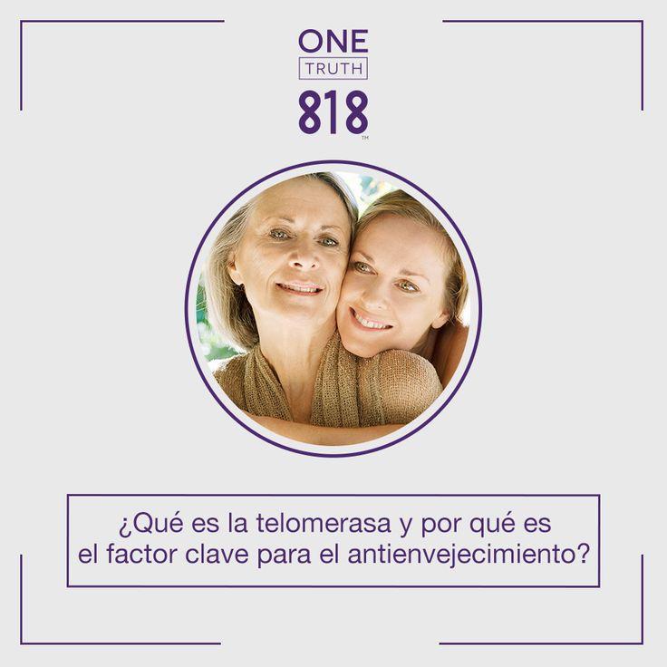La #telomerasa #invierte el proceso de #envejecimiento. El envejecimiento prematuro puede #revertirse reactivando una enzima que protege las puntas de los #cromosomas. #Onetruth es el producto que contiene mayor #telomerasa en el mercado.