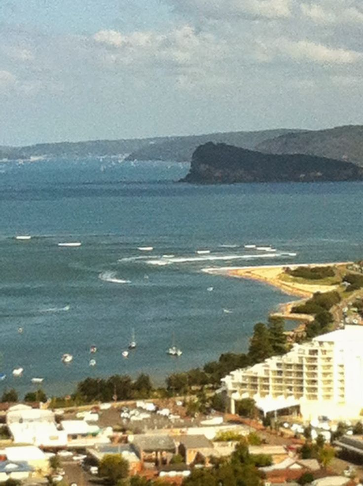 Lion Island from Blackwall Lookout