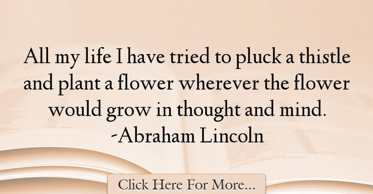 Abraham Lincoln Quotes About Nature - 51214