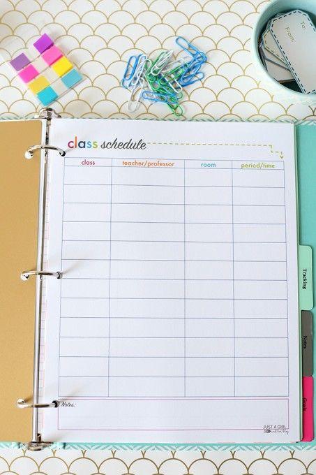 Best 25+ School schedule printable ideas on Pinterest Schedule - school schedule template