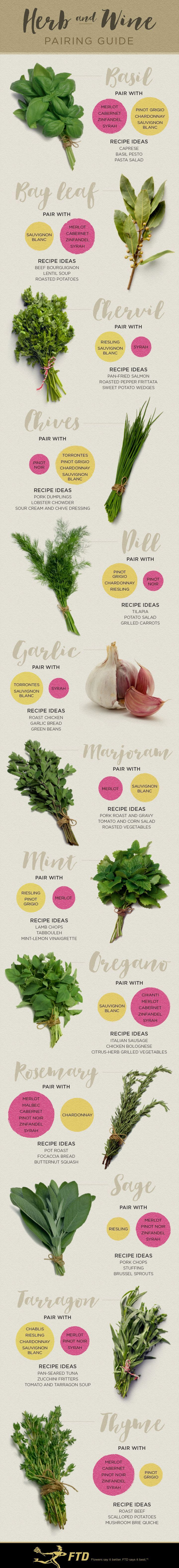 A Pairing Guide: The Best Wines For The Herbs You Cook With! - I love cooking with fresh herbs and I love wine, so what better way to learn about pairing the two than with this infographic! #winepairings
