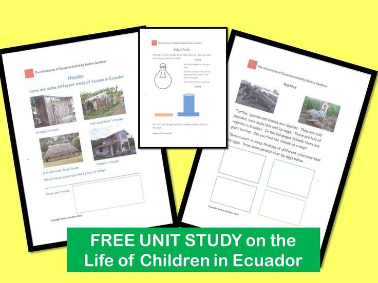 Free Unit Study to learn about the life of children in Ecuador.  Accompanies the enchanting children´s book, The Adventures of Tamarita Rachel
