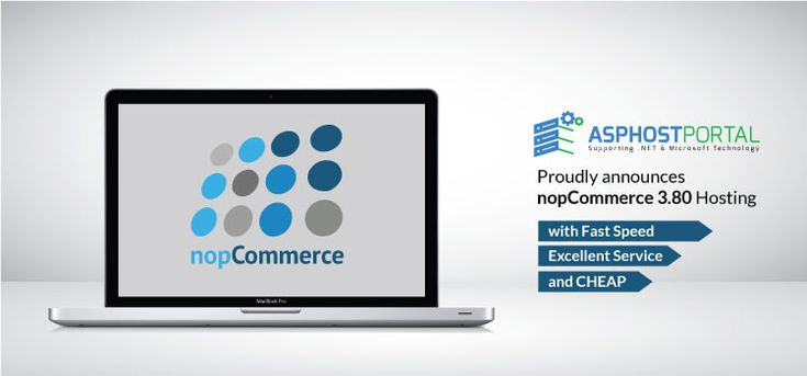 TOP 3 Cheapest nopCommerce Hosting Solutions | ASP.NET Hosting Easy | Review & Comparison