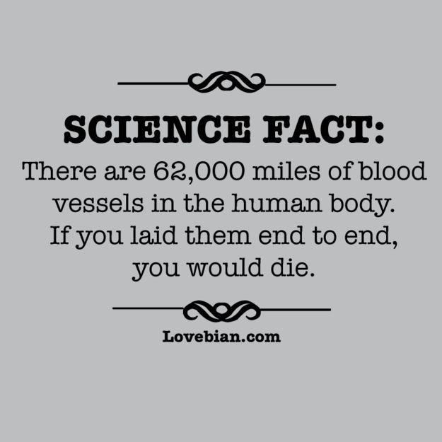 Science Facts Christmas: 16 Awesome T-Shirt Designs That Make You Think