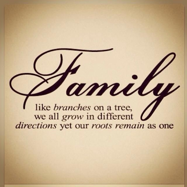 family trees quotes and sayings 2 pinterest