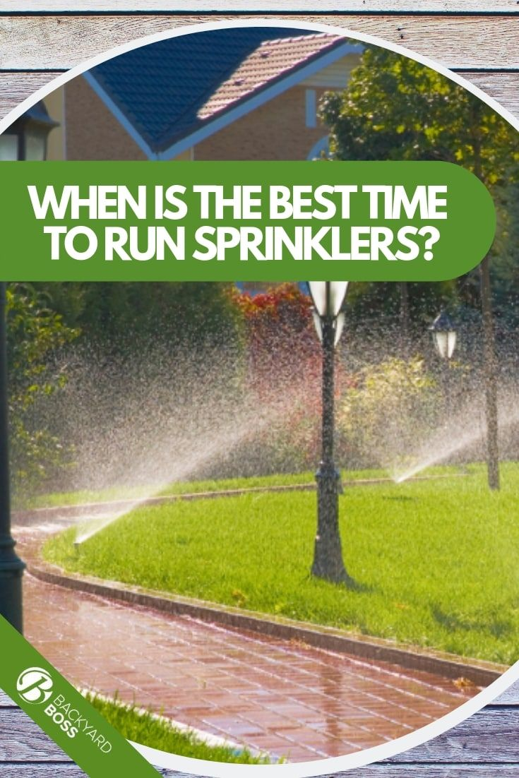 The Best Times To Water Your Lawn Explained Sprinklers