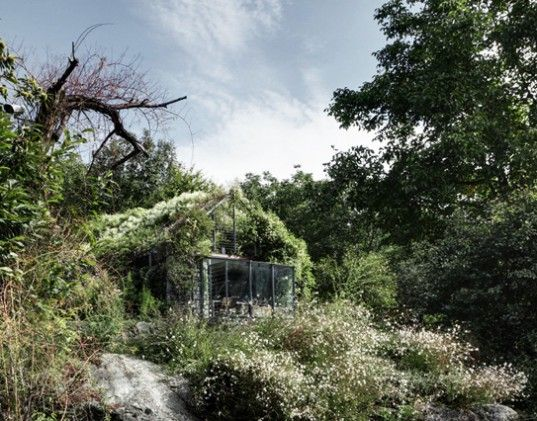 TAKE A LOOK INSIDE - Green Box: Gorgeous Studio Completely Wrapped in Living Plants by Act_Romegialli | Inhabitat - Sustainable Design Innovation, Eco Architecture, Green Building