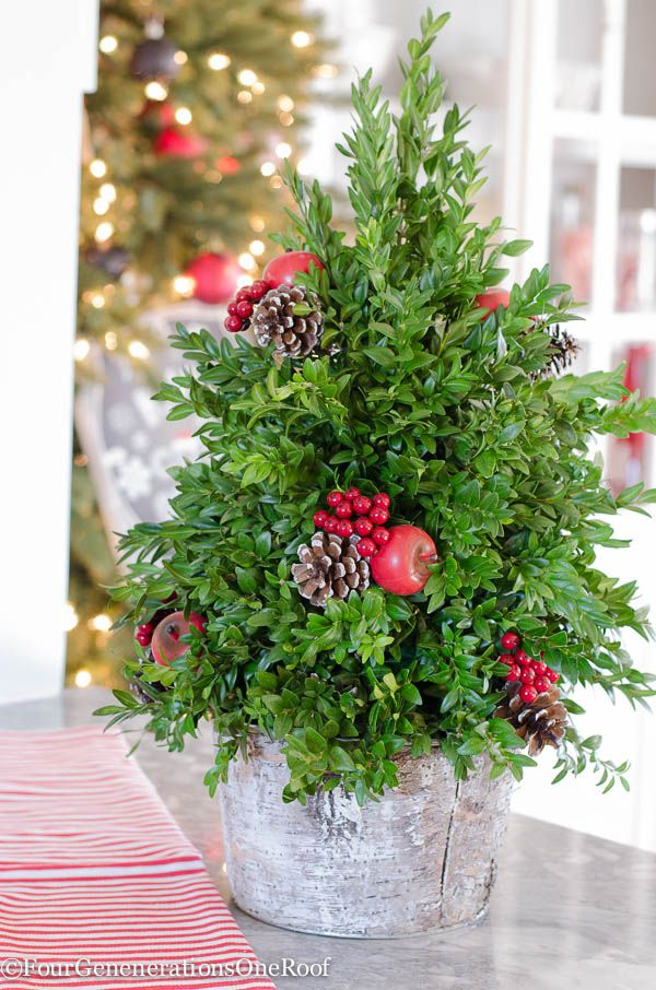 Crunched for time and need to spruce up a corner in your home for the holidays? I picked up a few holiday hand towels from HomeGoods and paired them with fresh greenery and this adorable boxwood tree.