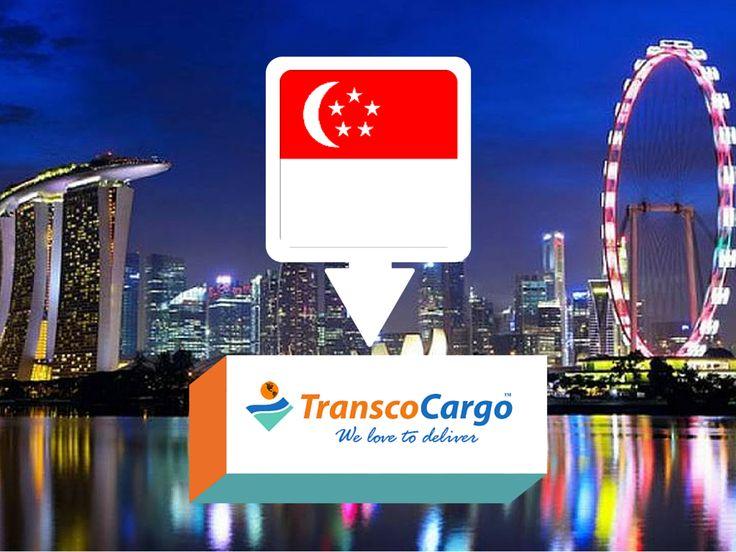 Transco Cargo Singapore  Customs regulations Shipping to Singapore Quotation