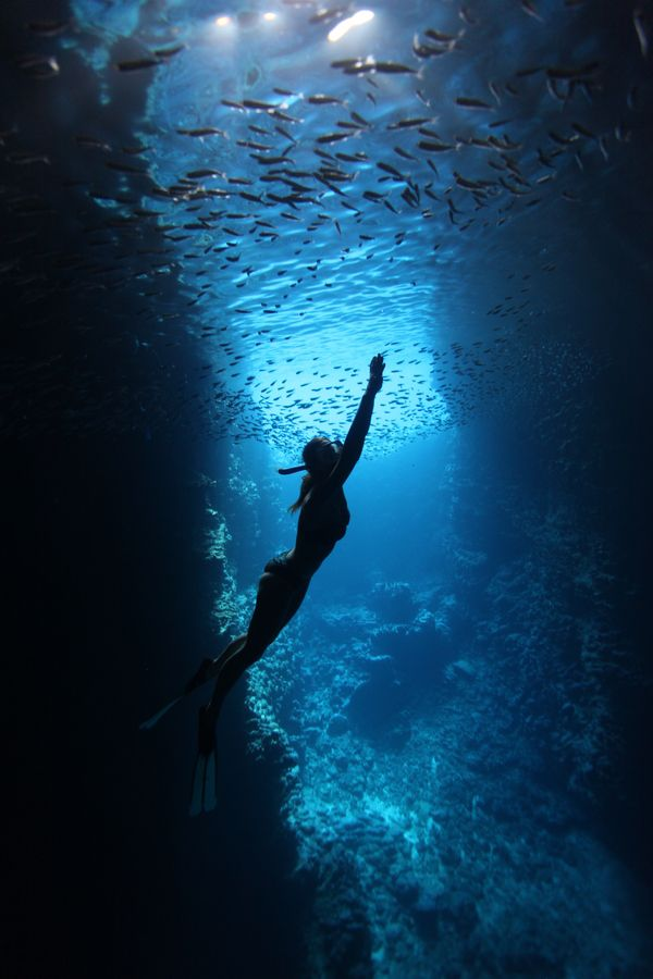 "how to open this up and make it feel not claustrophobic... ""Snorkeler in Swallows Cave, Tonga"""