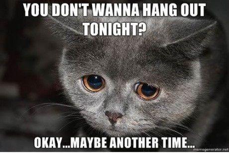 Aww.... @ TRINA POORMAN: Kitty Cat, Meme Comic, Funny Pictures, Funny Cat, Funny Meme, Funny Stuff, Sadcat, Sad Cat, Sad Kitty