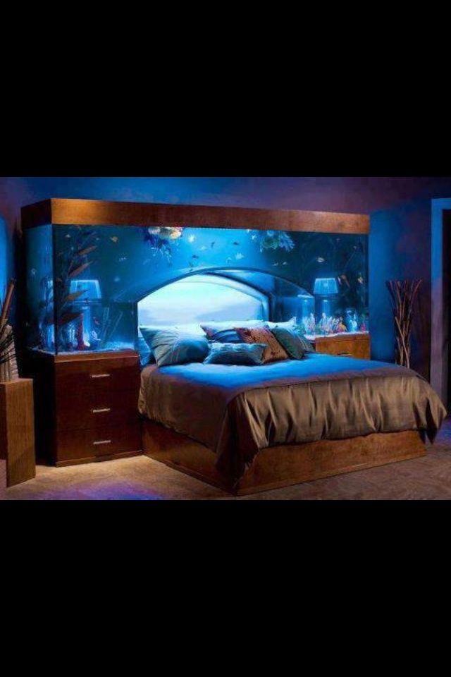 WANT.Dreams Bedrooms, Ideas, Headboards, Fish Tanks, Aquariums, Dreams Beds, Head Boards, Interiordesign, Design Home